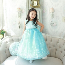 Frozen Inspired Kids Girl Long Dress with Flying Scarf