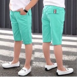 Kids Boy Short Pant Cropped Pant - Mint Green
