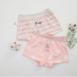 Kids Girl Premium Quality Cartoon Panties Pant (2 pieces)