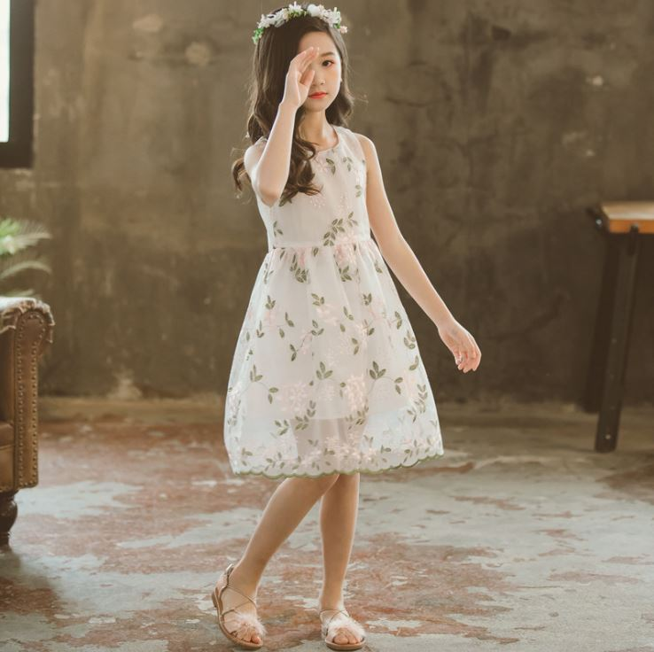 1003240 Kids Girl Flower Embroidery Dress